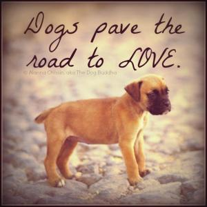 dogspavelove